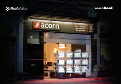 539_acorn
